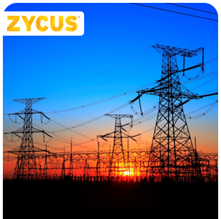 Electric Power Company in the US Increases Visibility and Compliance by Integrating Existing System with Zycus Solutions