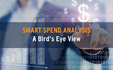 Smart Spend Analysis: A bird's eye view