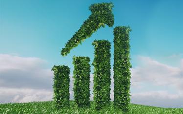 Sustainable Procurement for Compliant, Future-Ready Enterprises